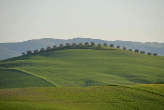 Holiday house in Grotte di Castro, Lazio - Pienza - landscape