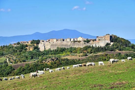 Location de vacances en Trevinano, Lazio - Vue sur Trevinano